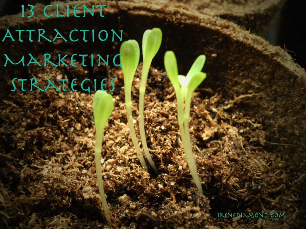 plant seeds of marketing
